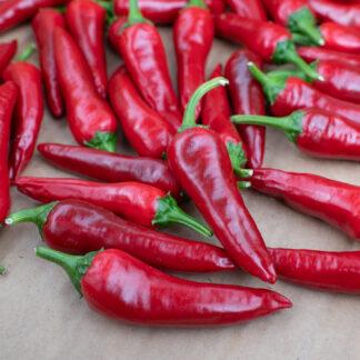 Chilipepper De Cayenne